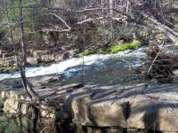 Stream At Pine Lake ( Early Spring ) -#3