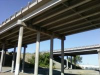 On my walk under the freeway