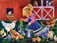 Feeding Chickens on The Farm
