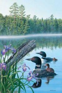 Seasons of the Lake-Summer-Loons by Jim Kasper