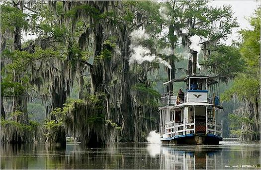 Caddo Lake & Graceful Ghost Tour Boat