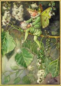 The Poplar Tree Fairy (smaller size)