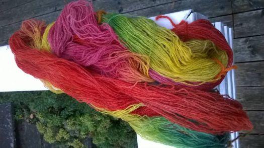 Handdyet yarn - red-orange-yellow-green