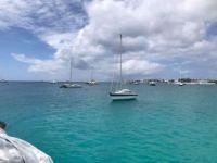 Beautiful Barbados - Matthew Field