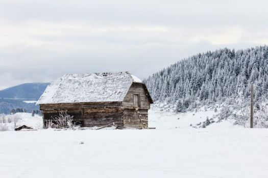 Cabin in the snow....
