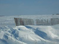 The Snow Fence.