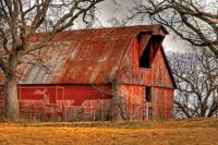 Old Red Barn Nestled in the Trees....