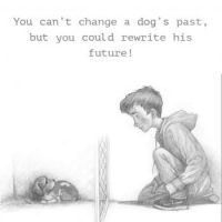 You can change an animal's future