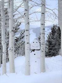 Winter Fun (2)