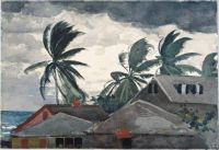 Winslow Homer--Hurricane, Bahamas, 1898