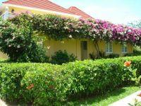 Sandals-Montego Bay Lush garden