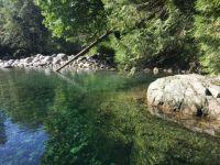 Lynn Canyon Park Lake