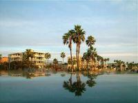 Venice Beach Mirage