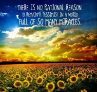 No Rational Reason...