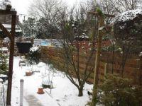 At Impie's winter Bird restaurant ☺☺