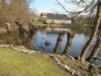 Za rybníkem - behind the pond, CR