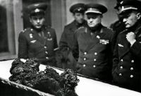1967 remains of Astronaut Vladimir Komarov, fell from space