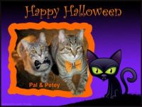 Petey & Pal say Happy Halloween!