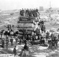 Logging in late 1800s