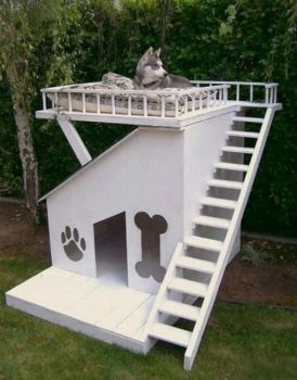 What A Doghouse!!