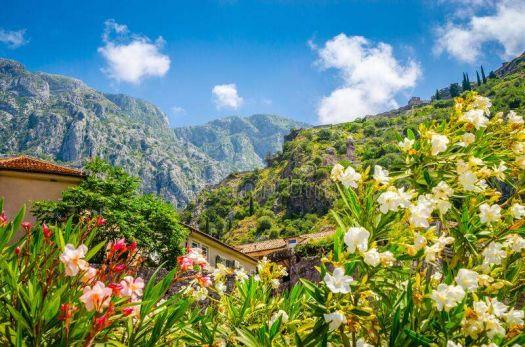 Kotar, Montenegro