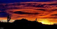 Arizona January Sunrise