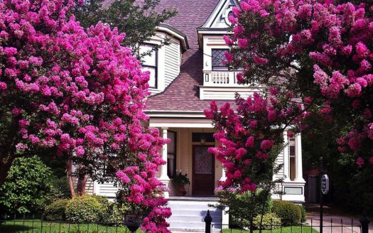 Pretty Victorian Home in Spring