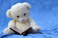 Teddy Bear Reading A Book