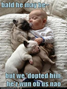 Got to be another Awwww......