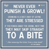 NEVER PUNISH GROWLING