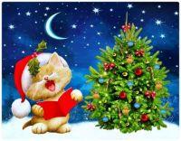Christmas Carol Cat