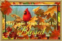 Good Morning - Monday Blessings!