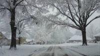 Gotta Love a Snowy Day