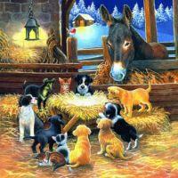 Barnyard Nativity by Chrissie Snelling