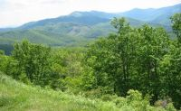 Another view from the Blue Ridge Parkway