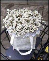 ~Bagged Flowers~