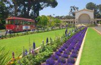 Balboa-Park/Organ-Pavilion, CA