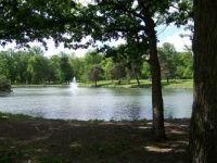 Summer day in Washington Park