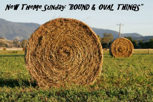 "New Theme Sunday: ""ROUND & OVAL THINGS""  Lots of choices, have fun!!"