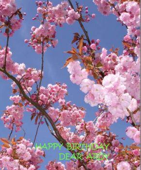 Happy Birthday dear Ardy
