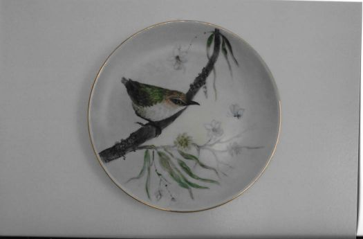 Matuhir   South Island Bush Wren