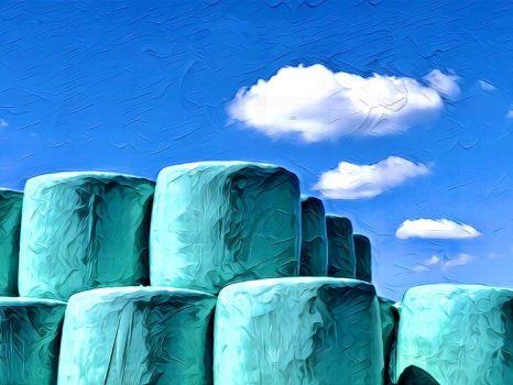 Hooibalen in Friesland (a.k.a. giant blue marshmallows)