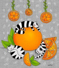 Striped Cats and Oranges