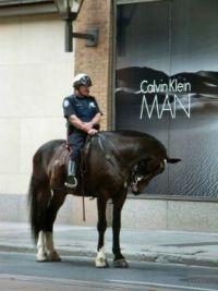 Toronto Policeman