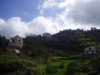 194-Madeira
