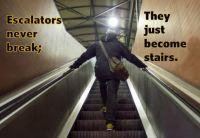 Escalators Never Break