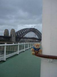 Teddy went to Sydney 2