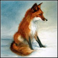 Seasonal - Winter - Art Card - Animal Red Fox (Largest)