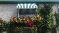 Window Box, Butchart Gardens, B.C. (by request)