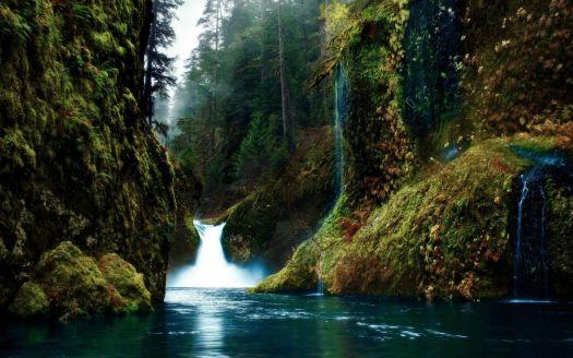 jungle-river